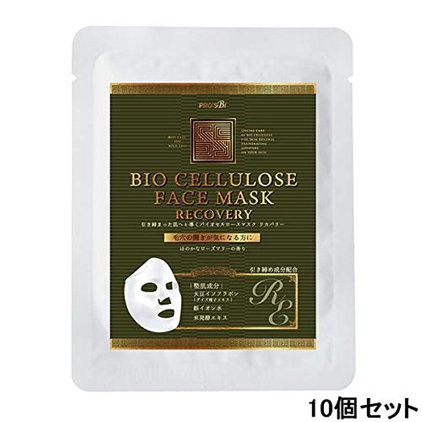 提案縞模様の思いやりのあるプロズビ バイオセルロースマスク リカバリー (10個セット) [ フェイスマスク フェイスシート フェイスパック フェイシャルマスク シートマスク フェイシャルシート フェイシャルパック ローションマスク ローションパック 顔パック ]