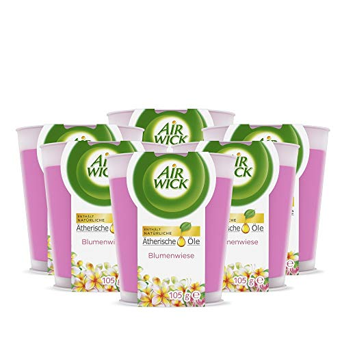 Air Wick Wohlfühl-Duftkerze im Glas – Duft: Blumenwiese – Enthält natürliche ätherische Öle – 6 x Duftkerze in rosa