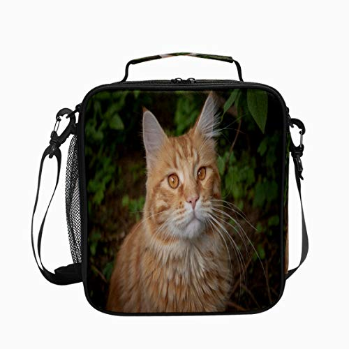 Cat Whiskers Ear Eyes Cute Premium Insulated Lunch Box Spacious Durable School Lunch Bag for Kids Boys Girls Reusable Leakproof Cooler Tote Bag with Removable Shoulder Strap for Adults Men Women