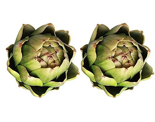 Cuisit 2 Stück Artischocken Künstliche Sukkulenten Pflanzen Set Ohne Topf für Haus Büro Balkon Dekor(Gelbgrün)