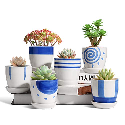 T4U 8CM Ceramic Succulent Pot with Fixed Saucer Set of 6, Japanese Style Cactus Planter Small Round Bonsai Plant Pot Tiny Decoration Gift for Home, Office and Garden (No Plants)