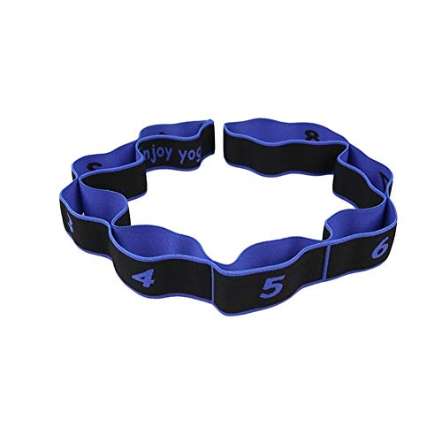 LUOSI Elásticos de Fitness Bandas Profesionales De Gimnasia For Adultos Entrenamiento América Multi-funcionales Pilates Yoga Stretch Bandas De Resistencia Fitness Elastic Band (Color : Blue)