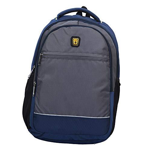 Good Friends Blowzy Unisex 25 L Casual Laptop Backpack (Grey)