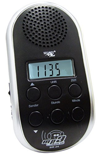 Point BR 24 - Radio para Bicicleta (sintonizador PLL, conexión MP3), Color Plateado