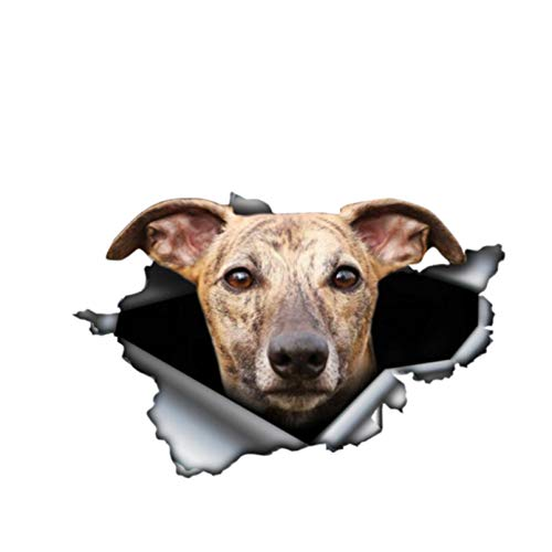 GDYL Etiquetas Engomadas del Coche Personalidad Brindle Greyhound Dog Vinilo 3D Ventana De Coche Impermeable Accesorios Vinilo Decorativo PVC 13Cm * 9Cm