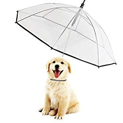 Morjava W555 Dog Umbrella Leash