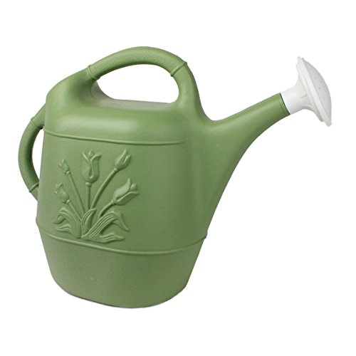 Union 63068 Watering Can with Tulip Design, 2 Gallon, Sage Green