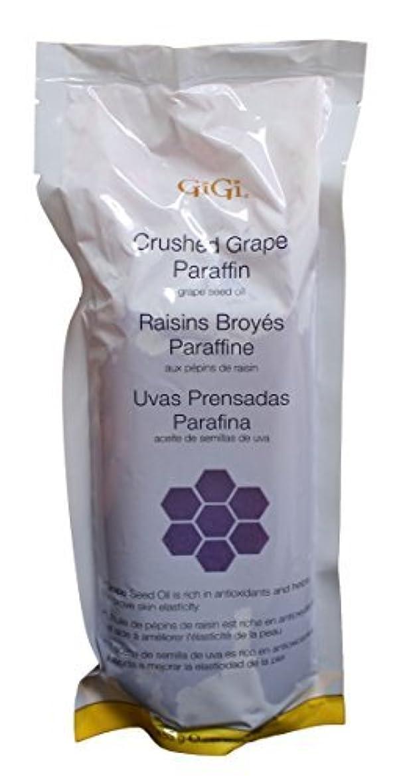 抑制する慈善パキスタン人Gigi GG-853 Crushed Grape Paraffin Hair Removal Wax [並行輸入品]