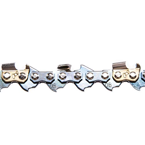 "Greenworks 2937002 10"" Replacement Chain"