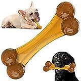 Giocattoli per cani quasi indistruttibili per masticatori aggressivi, giocattolo per cani d'osso di sapore di birra reale, nylon elastico e materiale dell'unità di elaborazione