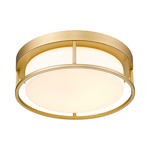 LED Ceiling Light Fixture, CALDI...