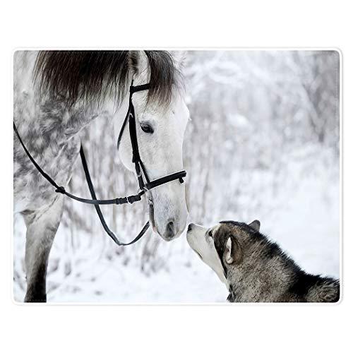 YISUMEI Warm Soft Cozy Plush Throw Fleece-Flannel Blanket 50'x80' White Horse Animal