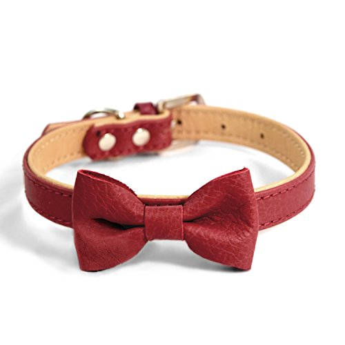 MARTHA STEWART Leather Bow Tie Buckle Collar for Dogs, Red, Size 14