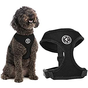 Gooby Dog Harness – Soft Mesh Head-in Small Dog Harness with Breathable Mesh – Perfect on The Go Mesh Harness for Small Dogs or Cat Harness for Indoor and Outdoor Use