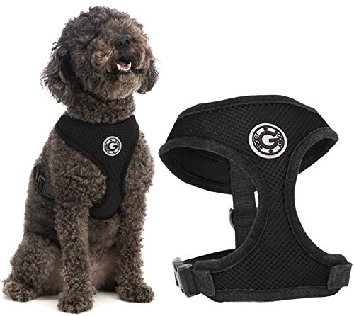 Gooby Dog Harness - Black, Large - Soft Mesh Head-in Small Dog Harness with Breathable Mesh - Perfect on The Go Mesh Harness for Small Dogs or Cat Harness for Indoor and Outdoor Use