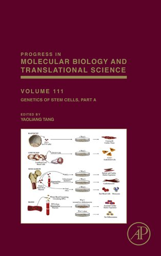 Genetics of Stem Cells: Part A (ISSN Book 111) (English Edition)