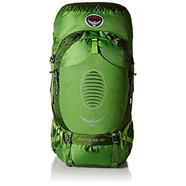 Osprey Men's Atmos AG 65 Backpack (2017 Model), Absinthe Green, Small