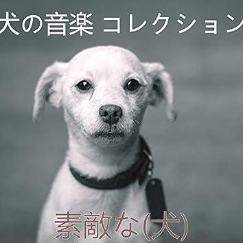素敵な(犬)