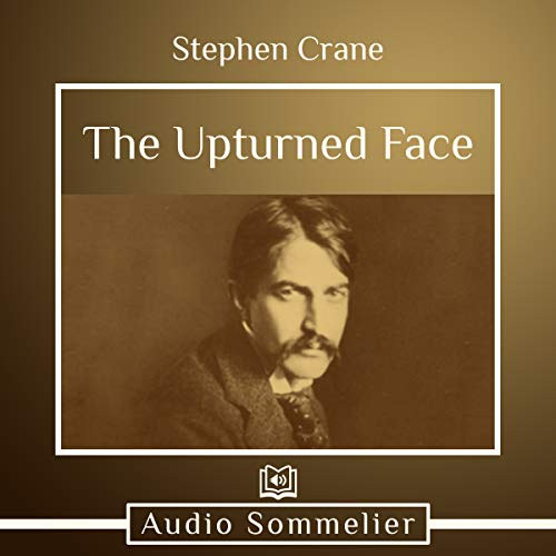 The Upturned Face  By  cover art