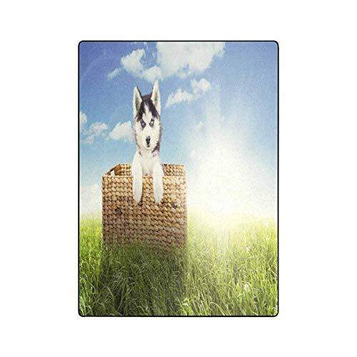 Mesllings Leuke Husky Hond Liggend in de rieten mand Fleece Deken Lichtgewicht Gezellige Pluche Deken 58