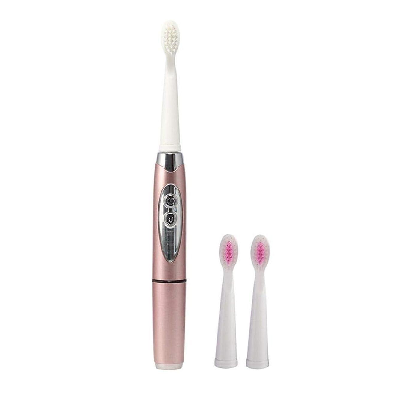 電動歯ブラシ電池式電動歯ブラシ3クリーニングモード歯ブラシオーラルケア大人の歯ブラシ