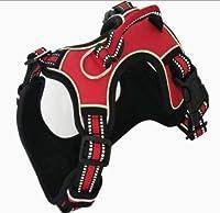 牽引ロープ中小犬チェーン犬の鎖ベルト犬の鎖ペットの胸部ストラップ付き犬の胸部ストラップ (Color : Red, Size : S)