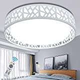 DLLT Modern Ceiling Light with Remote 35W, Dimmable Flush Mount Led Ceiling Light, Round Lighting Fixture for Bedroom, Kitchen, Dining Room, Bathroom, Hallway, Office, Foyer(3 color temperatures)White