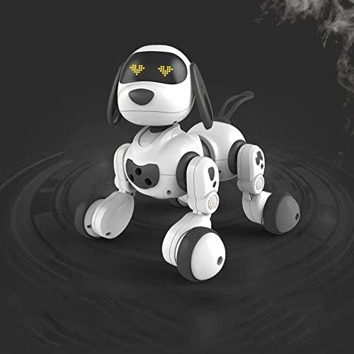 DGSPGD Roboter-Hundespielzeug Mit...