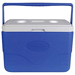 The Best Portable Cooler | Top 10 Updated List