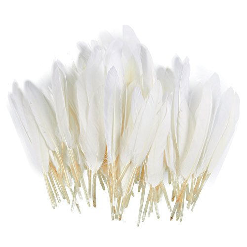 100 Piece Goose Feathers, Natural Feathers for Crafts, DIY, Wedding, Bridal Shower, and Party Decorations
