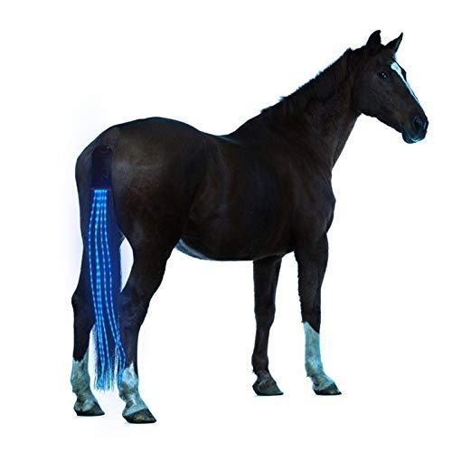 Neue 100 cm Pferd Schwanz USB Lights Aufladbarer LED Pferd Harness Reiter Outdoor Sport Reiten Schwanz Lichter Ausrüstung Pferdesport (Color : 100cm Blue)