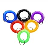 Pack of 6 Colorful Spring Spiral Wrist Coil Key Chain, Wristband Key Ring