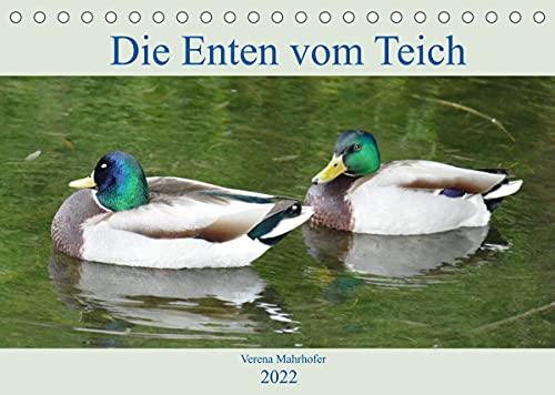 Die Enten vom Teich (Tischkalender 2022 DIN A5 quer)