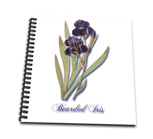 3drose DB 171212 1 Bearded Iris, Botanical Print van donkere paarse bloemen met oranje drawing boek, 8 van 20,3 cm