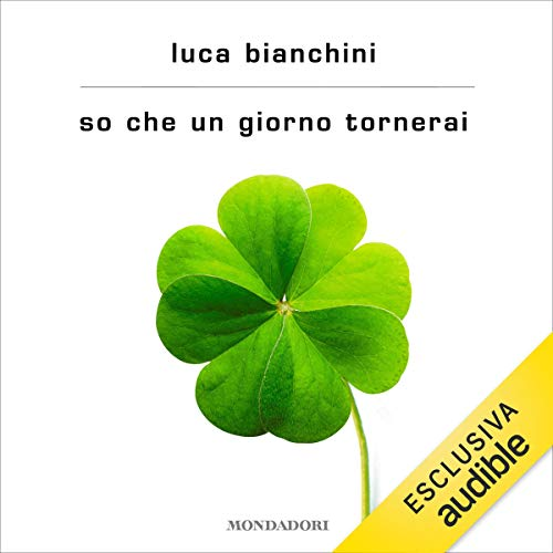 So che un giorno tornerai audiobook cover art
