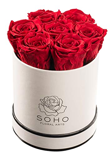 Soho Floral Arts | Real Roses That Last a Year and More| Fresh Flowers |Eternal Roses in a Box (Red: 7 X-Large Roses)