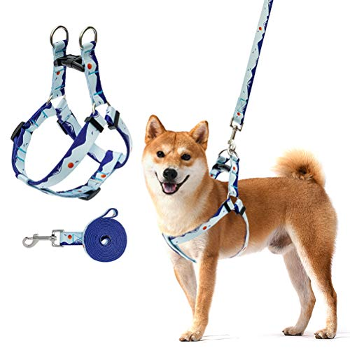 SCENEREAL Dog Harness and Leash Set, Durable No Pull Halter Harness Landscape Pattern Eye-Catch Dog Chest Straps for Medium Large Dog Wearing