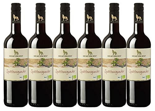Winzergenossenschaft Wolfenweiler Baden Wein aus ökologisch erzeugten Trauben Spätburgunder Rotwein QW trocken (6 x 0,75L)