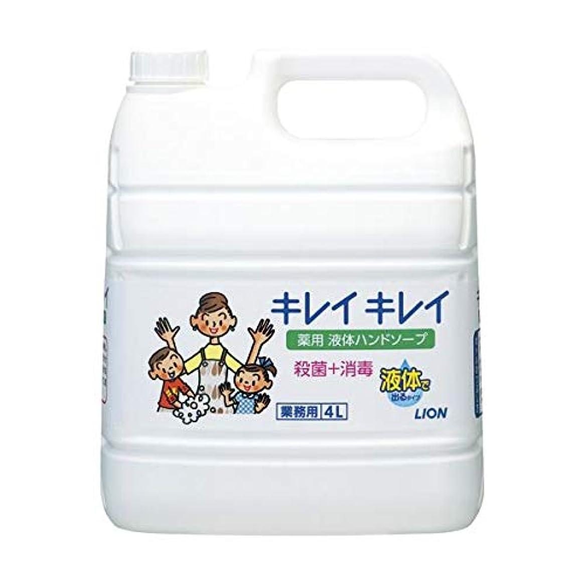レーザ海港申し立てられたキレイキレイ薬用ハンドソープ 4Lx3 ダイエット 健康 衛生用品 ハンドソープ 14067381 [並行輸入品]