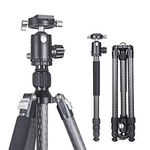 MENGS CFT-284A Kohlefaser Stativ 8X Carbon Fiber Reisestativ Einbeinstativ BHC-36 360°PanoramaKugelkopf + Clamp + Schnellwechselplatte für DSLR Kamera Canon Nikon Sony -Last bis zu 18 kg 172mm