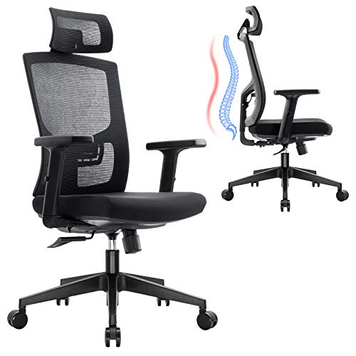 Ergousit Ergonomic Mesh Office Chair, Home Office Desk Chair High Back, Swivel Computer Chair with Adjustable Lumbar Support Headrest and Armrests, Wide and Thick Seat Cushion