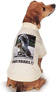 تيشيرت مطبوع عليه صورة السنجاب الحقيقي من Casual Canine مقاس متوسط، بني