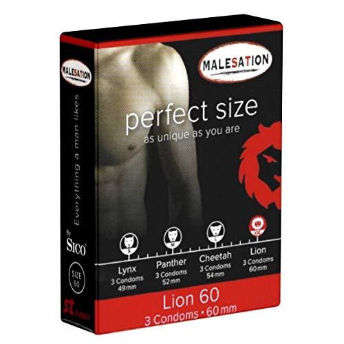 Malesation Perfect Size LION, große Kondome mit 60mm Breite, 1x3 Stück