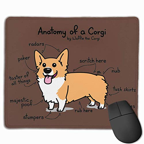SYMSPAD Anatomy of A Corgi Mousepad Mouse pad 8.6 X 7.1 in