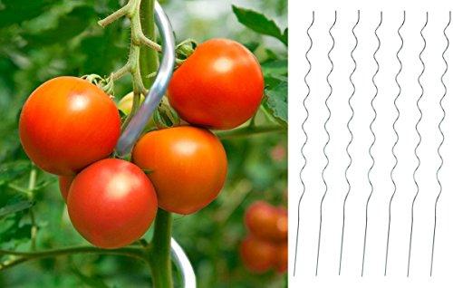 Markenlos 25 x Tomaten-Spiralstab 180cm Stahl verzinkt