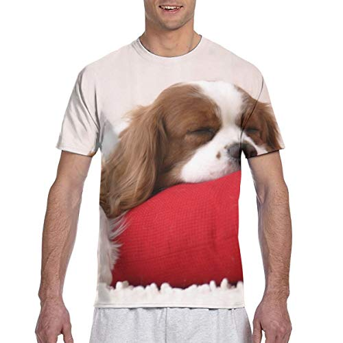 Cavalier King Charles Spaniel Poliéster Activo Camisetas de Manga Larga para Hombre