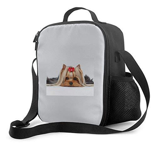 Lawenp Lying Yorkshire Terrier con linda cinta Yorkie Love Retrato de un perro Bolsa de almuerzo aislada, bolsa de almuerzo plana a prueba de fugas con correa para el hombro para hombres y mujeres, a
