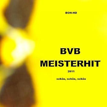 BVB MeisterHit 2011 - Schön, schön, schön