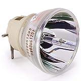AuKing Lámpara de Proyector para Optoma DLP HD143X HD243X HD144X HD270E HD27BE HD27E WU334 WU335 WU336 WU337 DH350 EH334 EH335 EH336 EH337 BL-FP240G SP.7AZ01GC01 Lámpara de Recambio