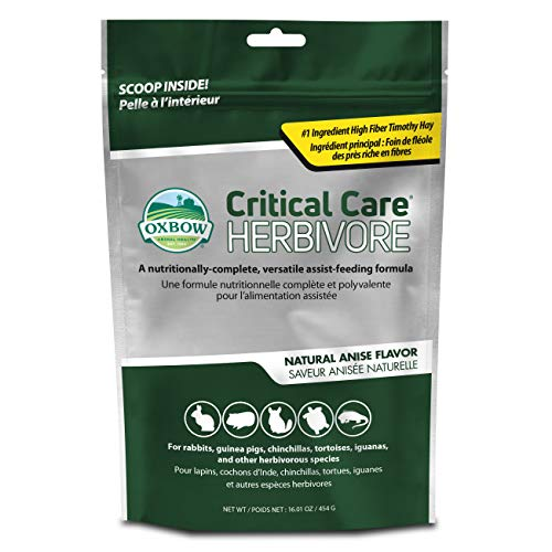OXBOW Animal Health Critical Care, Herbivore, Anisgeschmack, 454 g Beutel